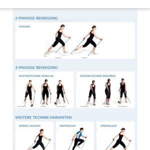 Nordic Walking Sporttechnik Plakat