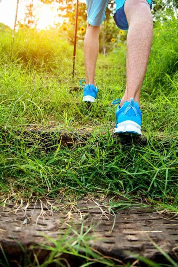 Nordic Walking Trainer Ausbildungen Lizenz